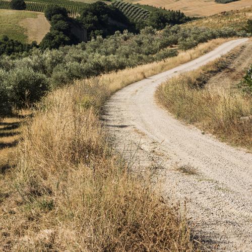 In Bici - Esperienza - Relais Cocci Grifoni